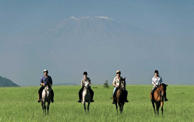 The hard truth about riding safaris