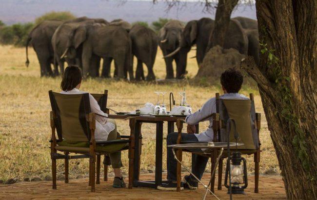Why use a safari agent?