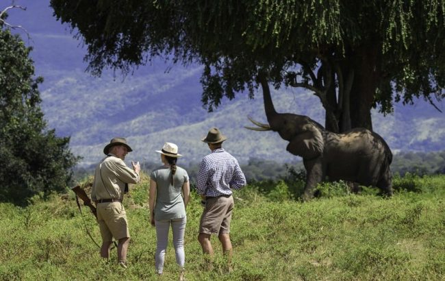 What is a private guided safari?
