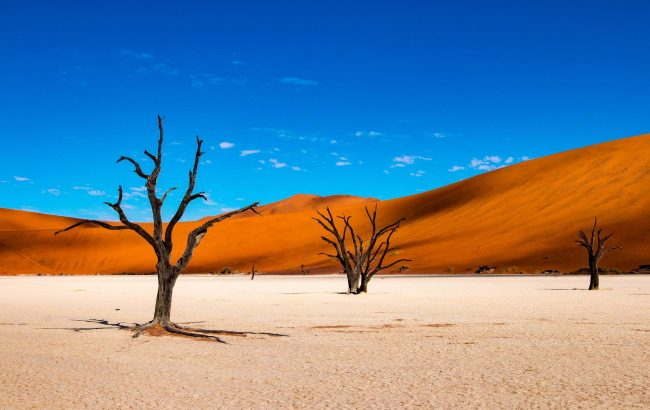 Namibia through the camera lens