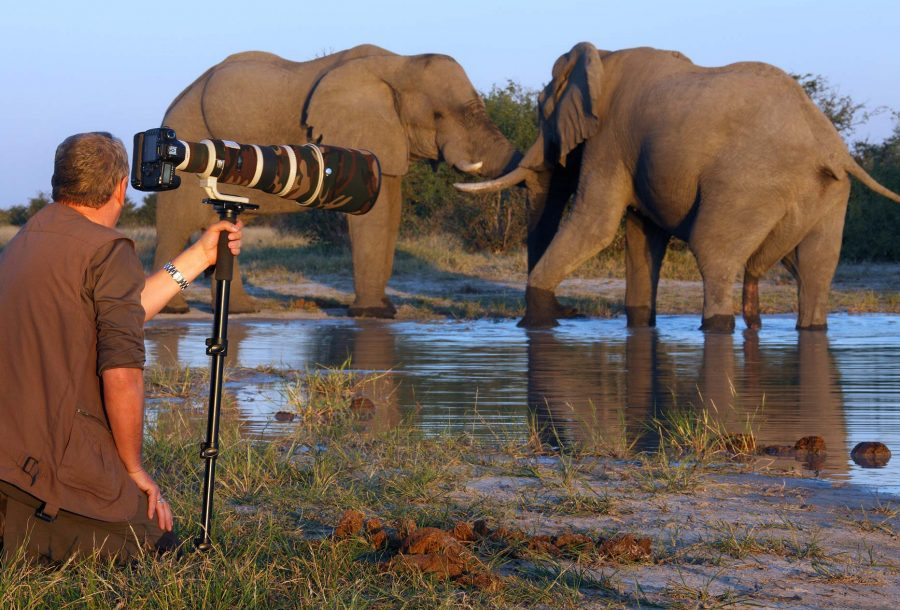 Photography Safaris