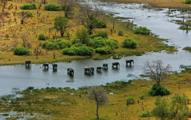 The Selinda Reserve
